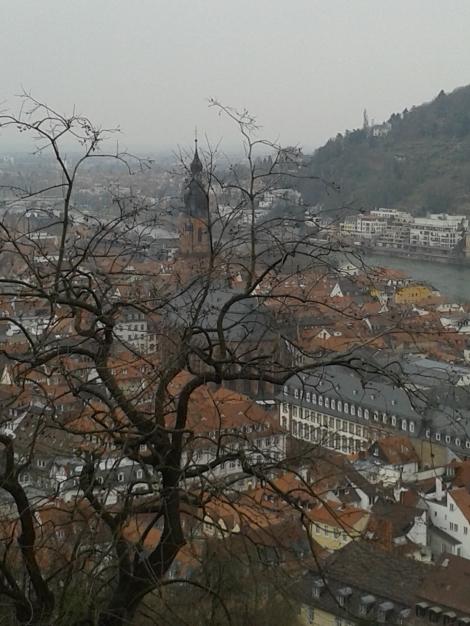 Heidelbergi pilt on kahjuks tehtud vihmasel päeval aprilli algul. Praegu kõik puud juba lehtis ja paljud ära õitsenud.