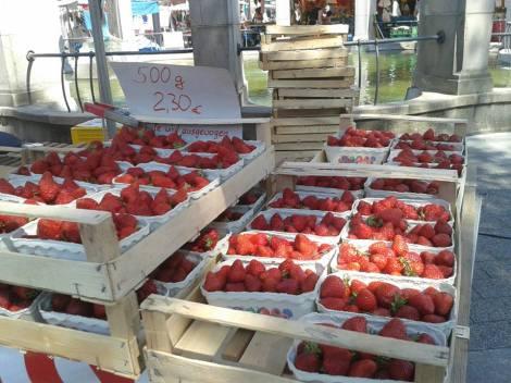 maasikas4