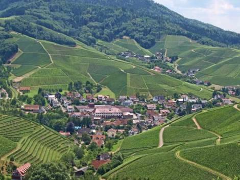 Durbach-Panorama