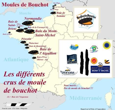 France Mytiliculture moule de bouchot terroir Charron mont saint michel normandie saint brieuc pƩnestin - La Plaine STG SpƩcialitƩ Traditionnelle Garantie