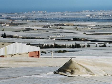 4500 tonni plastikut kulub igal aastal, et tunnelkasvuhooneid ehitada. Plastmassiäägid paraku satuvad loodusesse