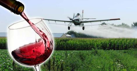 glyphosate-in-wine